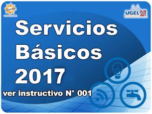SERVICIOS BÁSICOS 2017