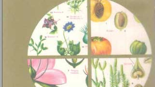 Atlas de Botanica Domenech | Ciencias Naturales