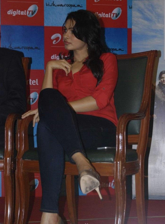 Andrea Jeremiah Stills At Vishwaroopam Pressmeet - Hot and