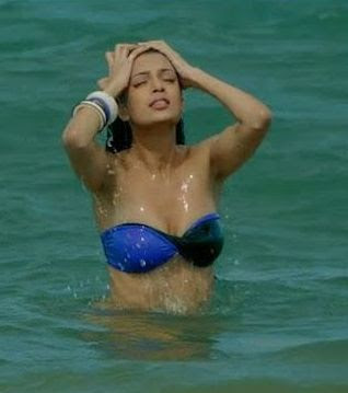cinema news and review tena desae hot bikini photos
