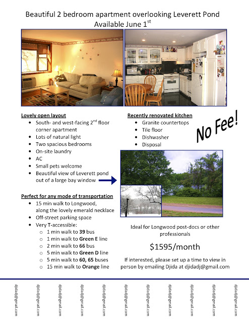 matelic image apartment for rent flyer