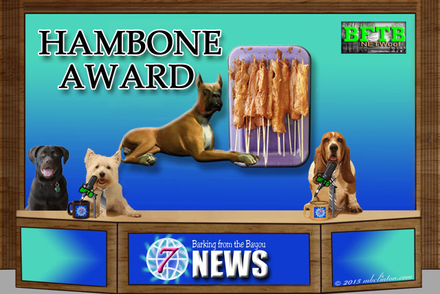 BFTB News set with the Hambone Award top story