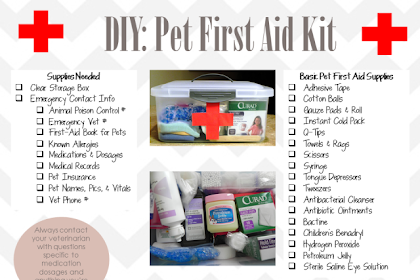 First Aid Kit Names
