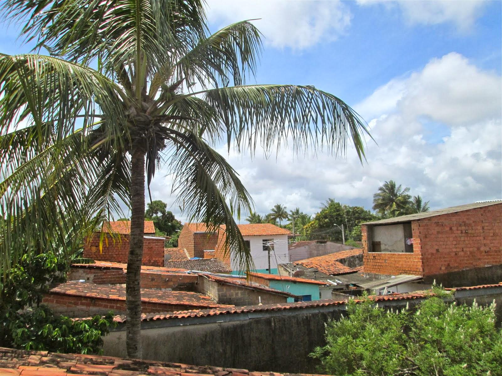 3rd Area Jardim Do Horto Maceió Alagoas  11/4/13