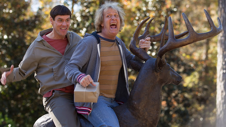 dumb and dumber to movie 2014 comedy.