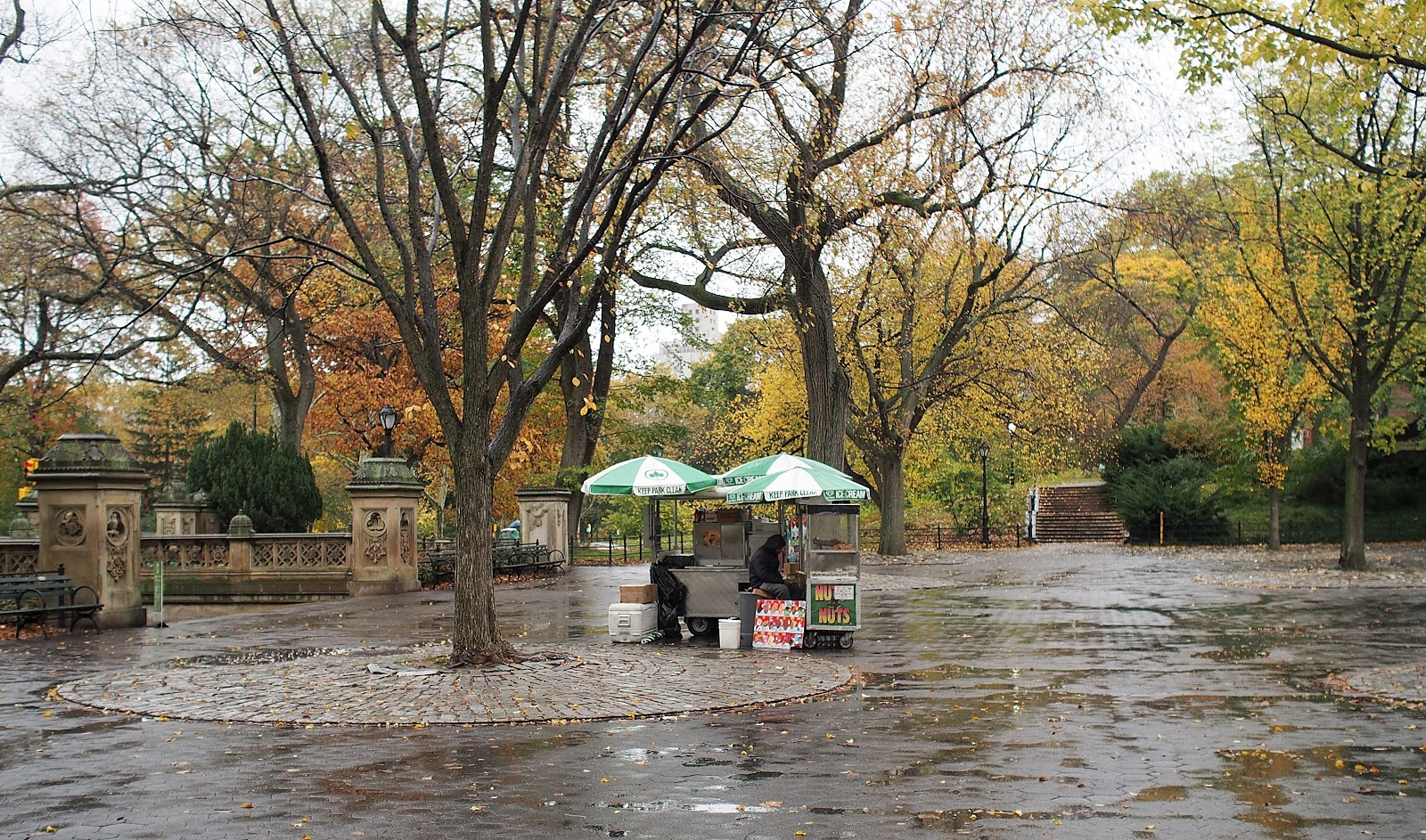 Slow Day at the Cart, #slowdayatthecart #thebandshell #centralpark #nyc #fall #fallfoliage #rainyday 2014