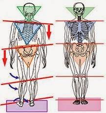 Body Alignment (Postur Tubuh)