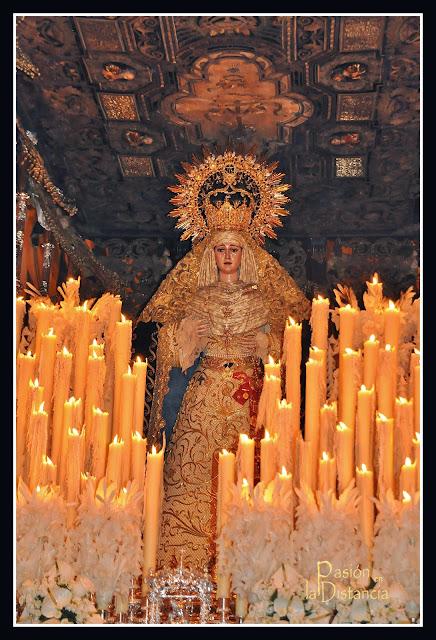 Palio-Palma-Coronada-Buen-Fin-2015-Semana-Santa