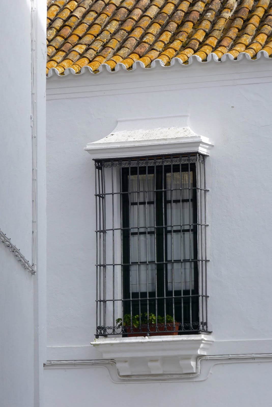 Las fotograf as de miguel roa algunas puertas ventanas y - Rejas para balcones ...