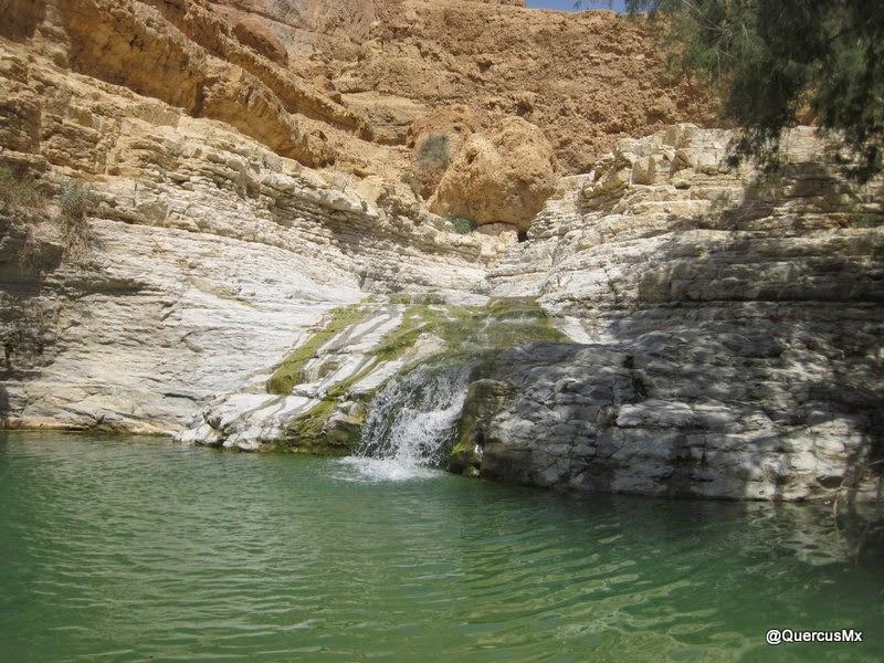 Una de las fosas al final del sendero en el cañón Wadi Arugot Para continuar en el sendero, tienes que cruzar la fosa