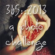 2013 Photo Challenge