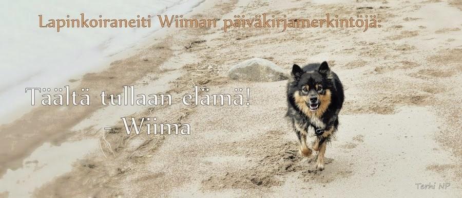 Wiima-neidin päiväkirja