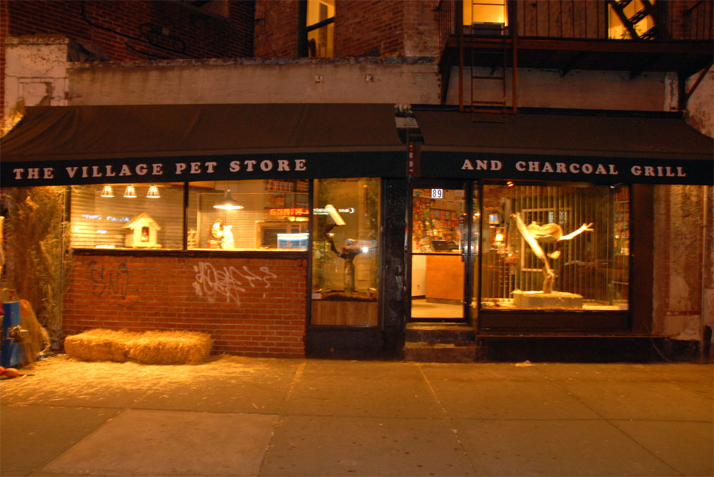 My top collection pet store pictures for Store fenetre new york