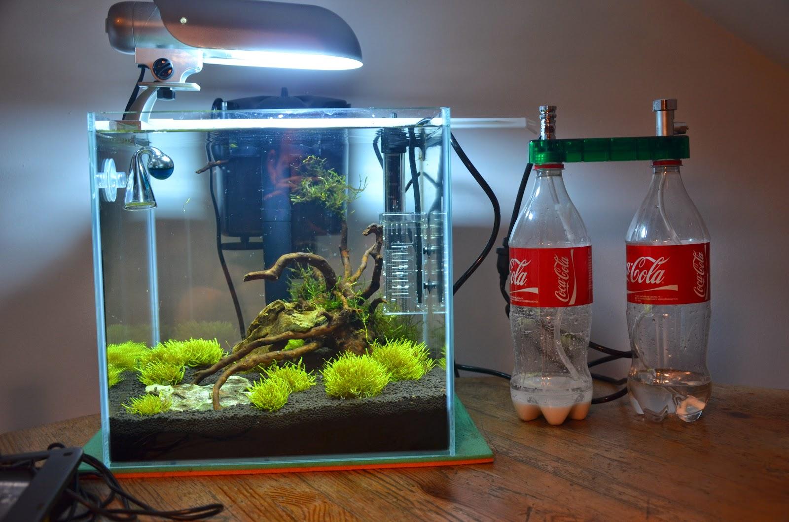 Как сделать аквариум своими руками из стекла: пошаговая инструкция 90