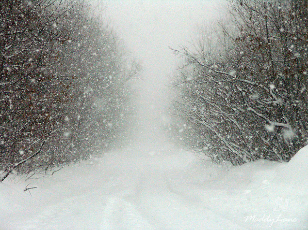 blizzards and snowstorms thinglink