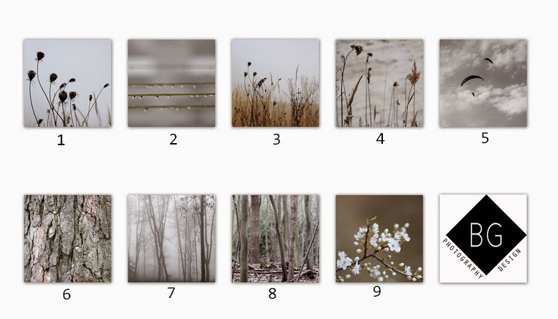 Giveaway s BG Photography