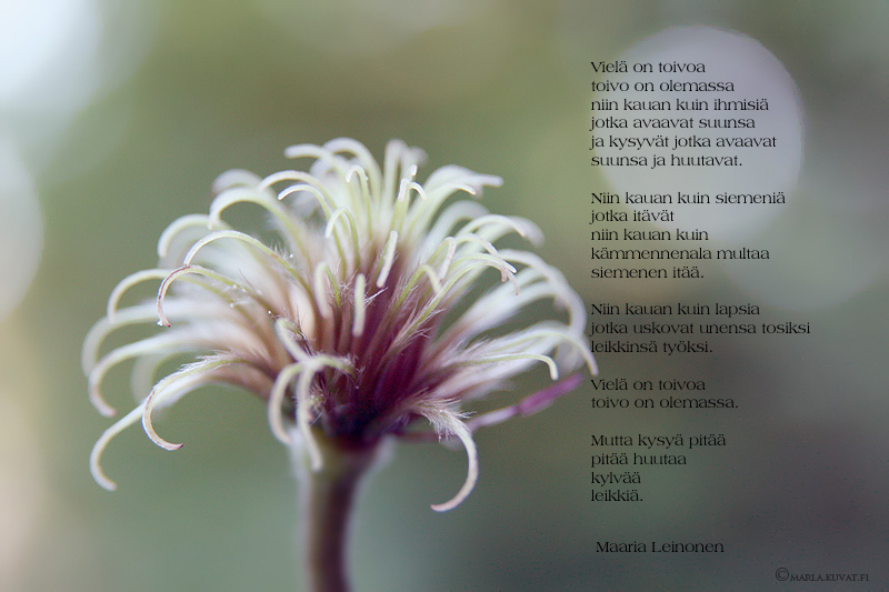 Runoja luottamuksesta