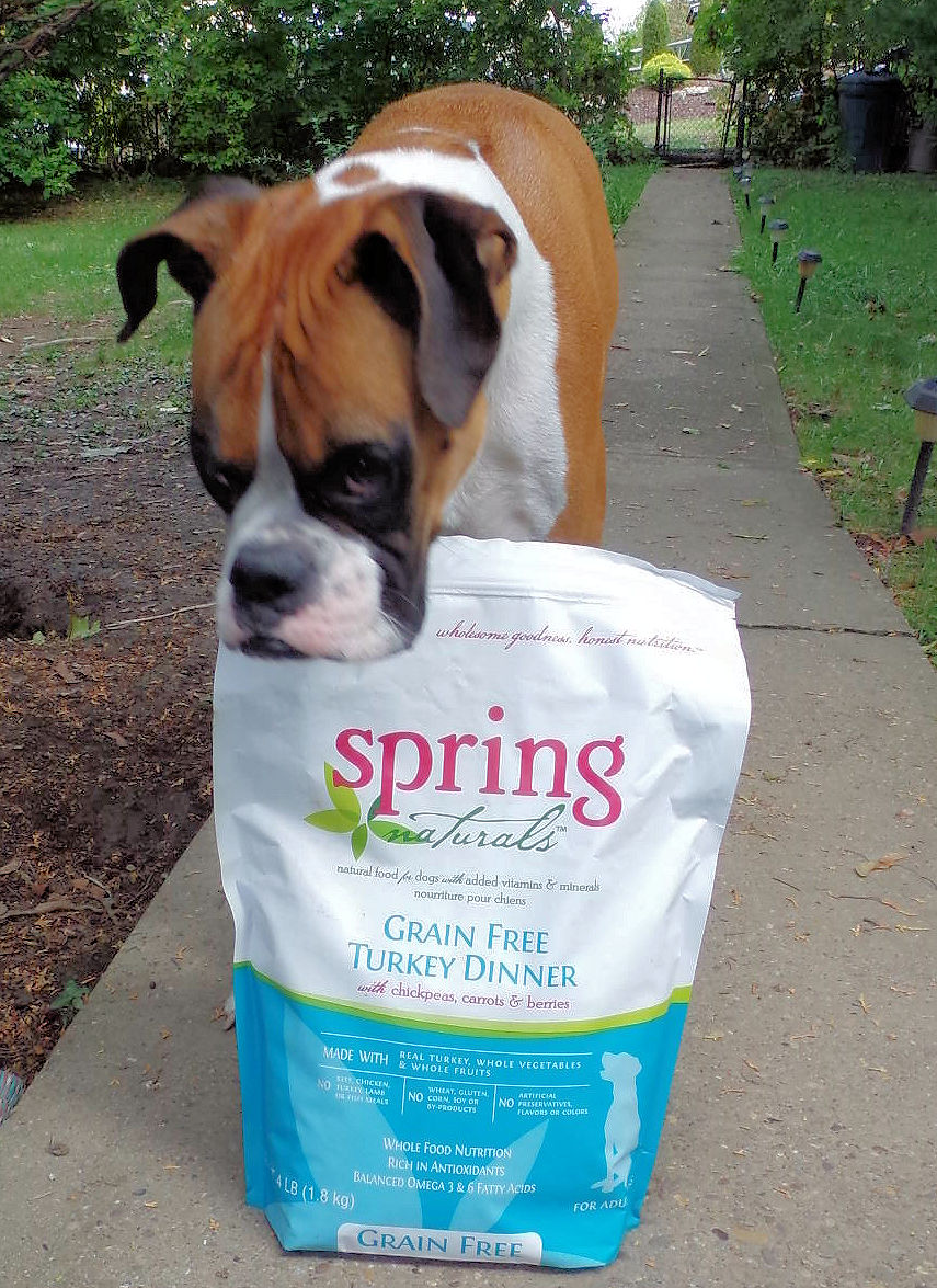 Dog Madness Win Spring Naturals Dog Food That Helps
