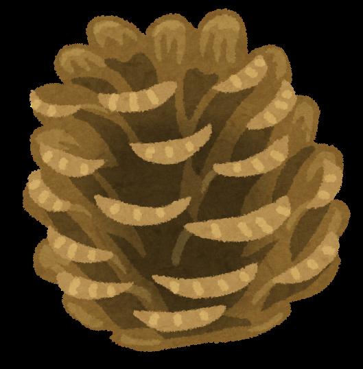 matsubokkuri.png (529×538)