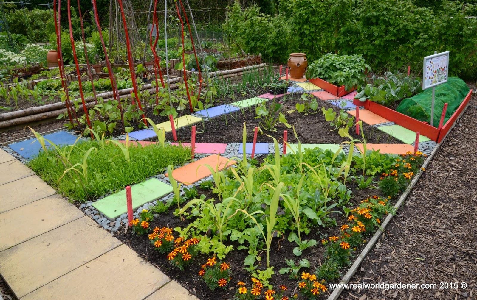 Real world gardener starting a garden from scratch part 2 for Designing a garden from scratch
