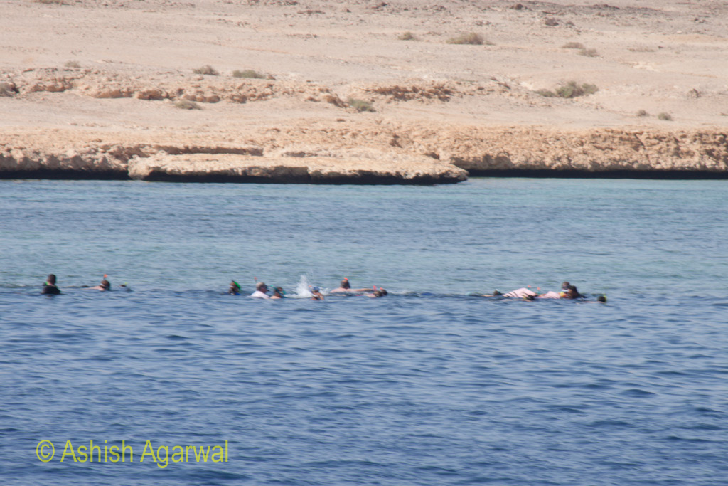 Multiple tourists above a coral formation near Sharm el Sheikh in the Red Sea
