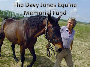 Please Give to the Davy Jones Equine Memorial Fund