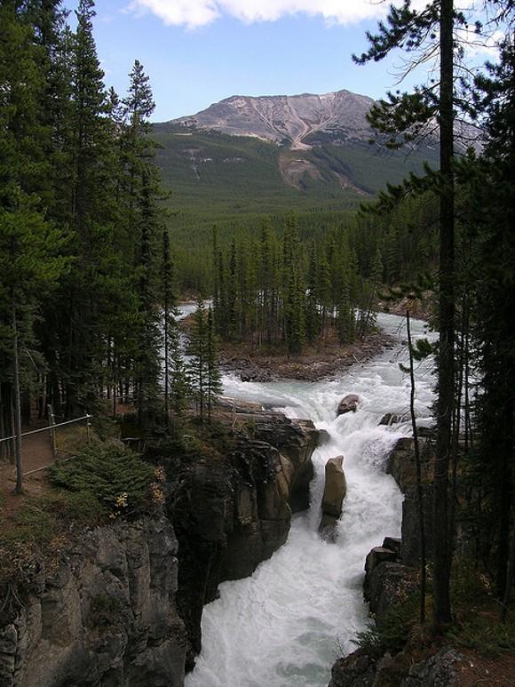 Canadadolcecanada alberta jasper national park for Cabine di pesca nel ghiaccio alberta