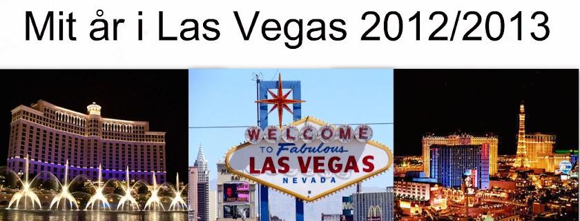 Mit år i USA 2012/2013