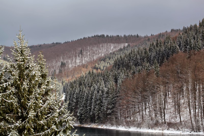 The Thuringian Forest in Winter.