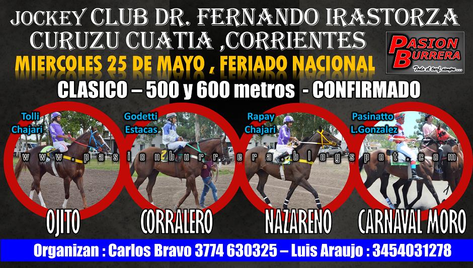 CURUZU 25 - 500 Y 600