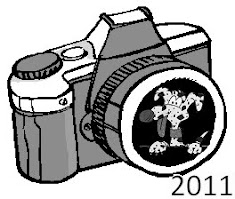 fotogallery 2011