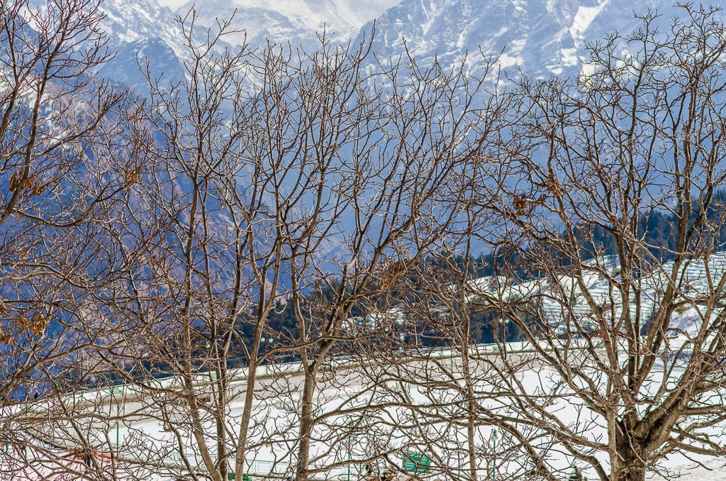 ski resort in india, bike trip to auli