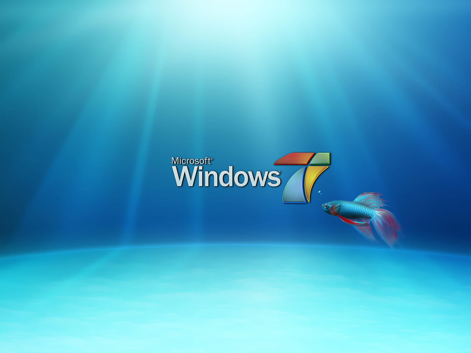window 7 HD Wallpaper: HD Wallpapers of Windows 7 2
