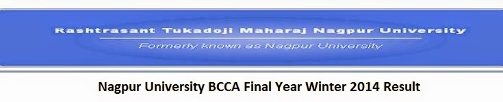 Nagpur University BCCA Final Year Winter 2014 Result
