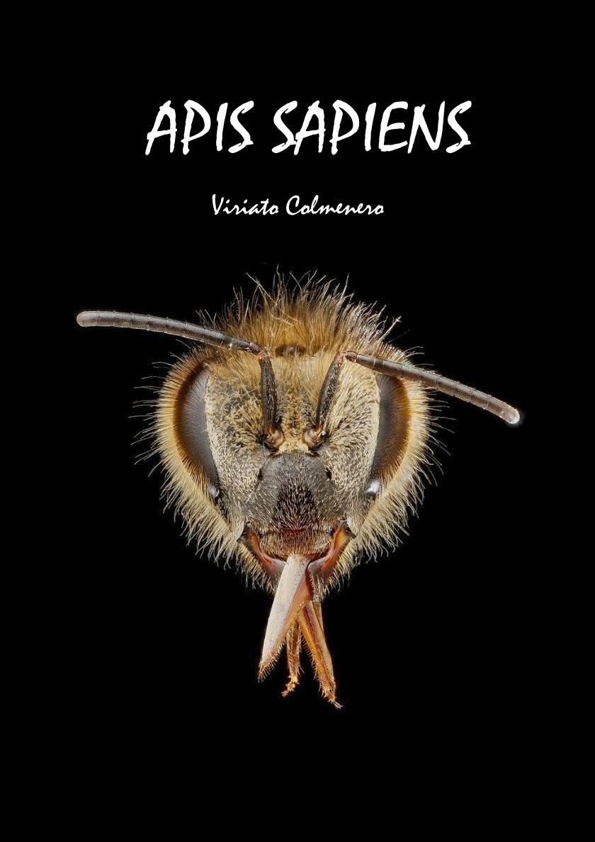 http://apissapiens.blogspot.com.es/2014/02/descarga-gratis-de-la-novela.html