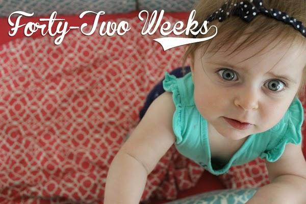 http://meetthegs.blogspot.com/2014/04/lilly-anne-42-weeks.html
