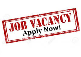 Edunovate Nigeria Recruitment for Graduate 2019