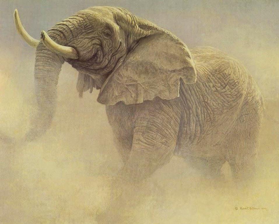 dibujos-de-animales-pintados-al-oleo