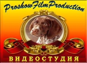Студия «ProshowFilmProduction»