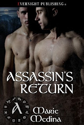 Assassin's Return (Valladora Tales 3)