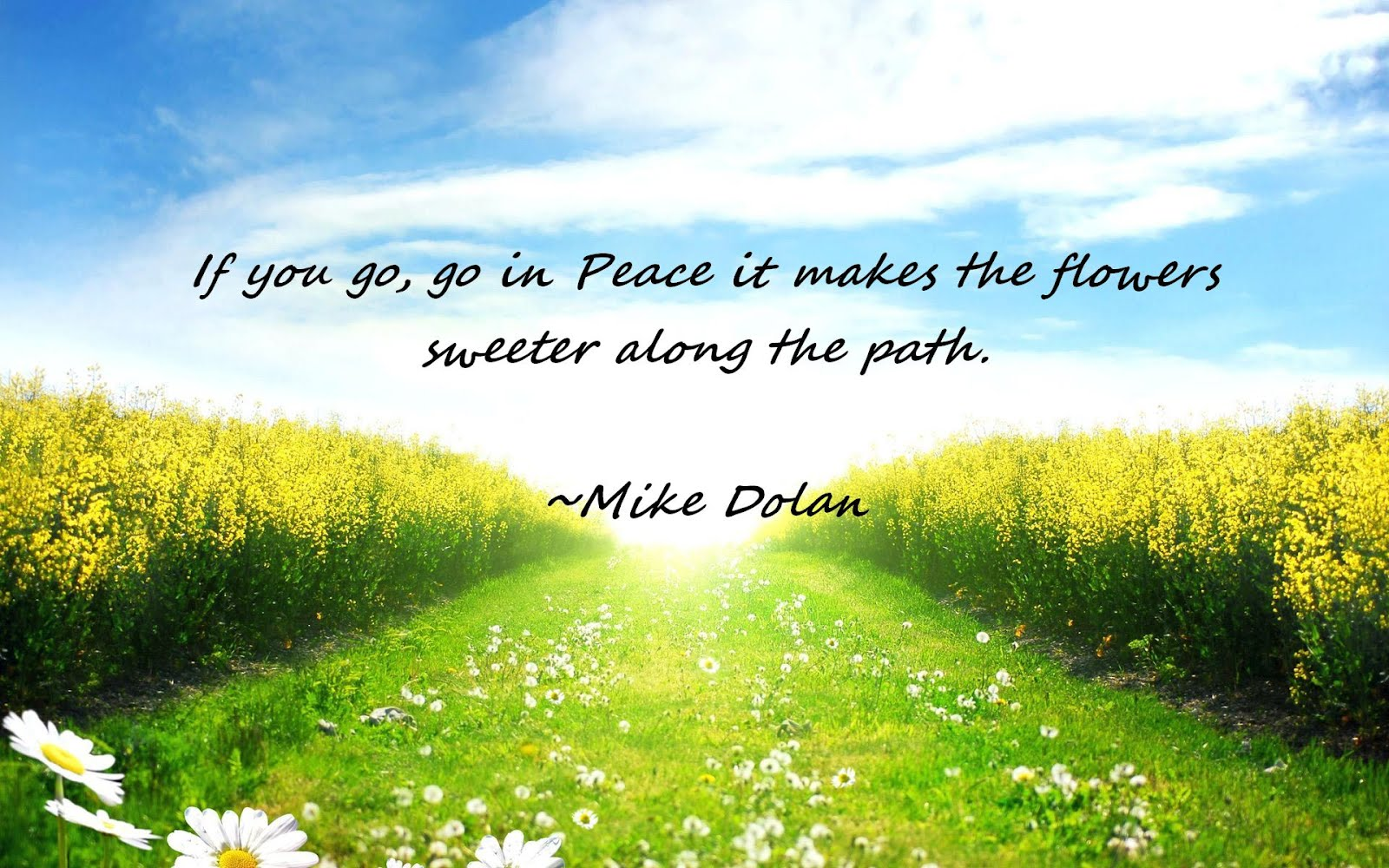If you go, go in Peace it makes the flowers sweeter along the path.""