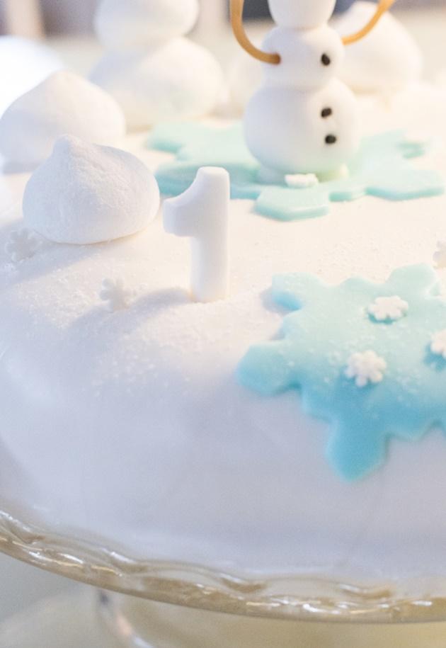 frozen kakkukoriste Viitasaari