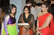 Rudhramadevi 3d trailer premier show-thumbnail-11