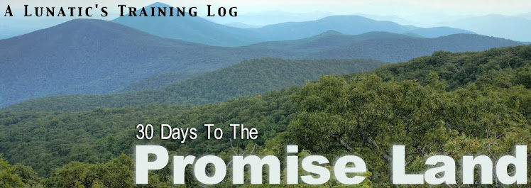 30 Days To The Promise Land: A Lunatic's Training Log.