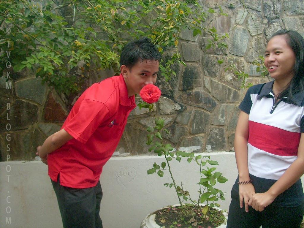 romantic ross flower