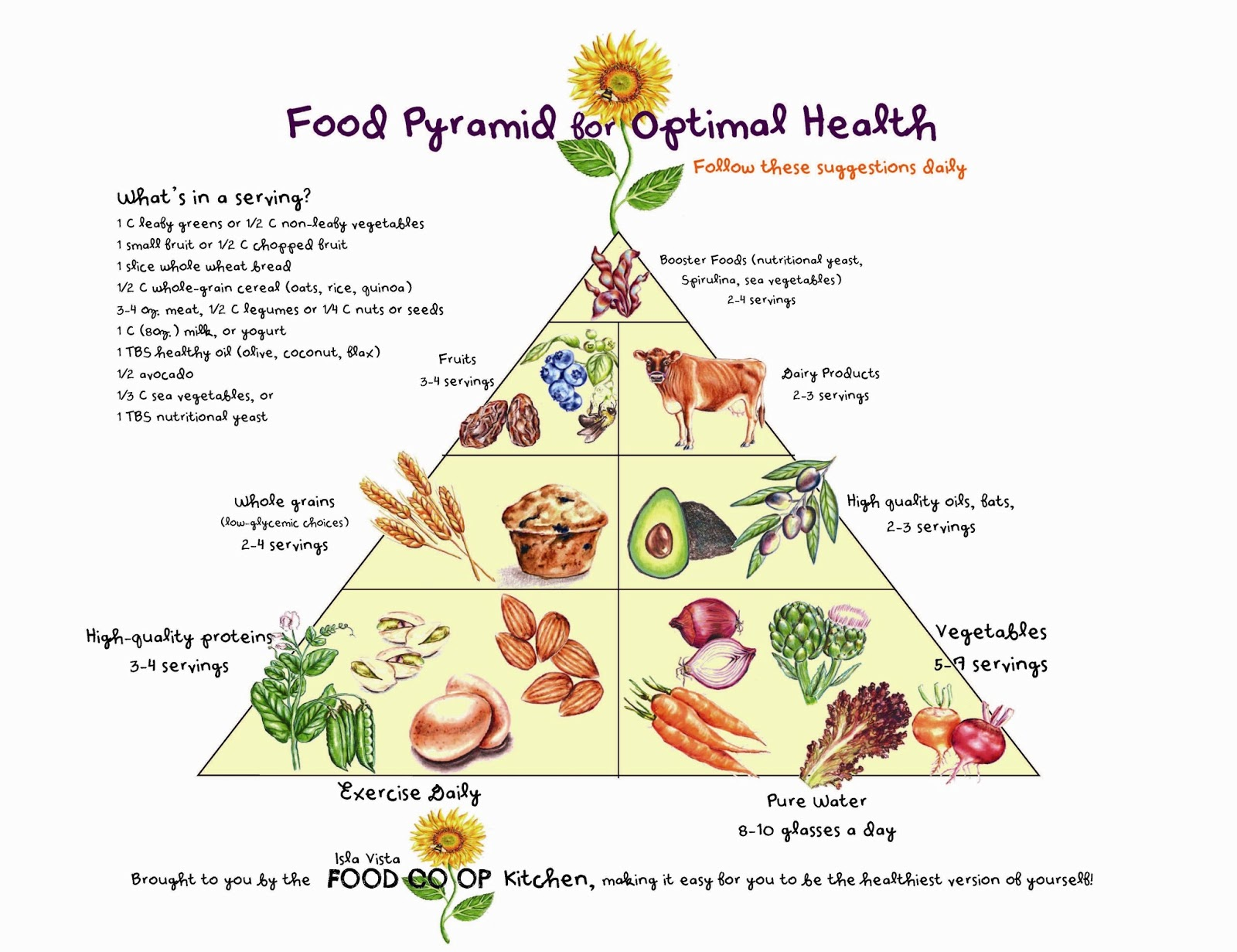 food pyramid essay View and download food pyramid essays examples also discover topics, titles, outlines, thesis statements, and conclusions for your food pyramid essay.