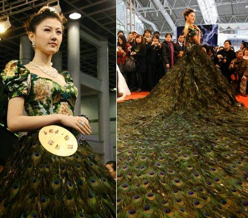 Top 5 world most expensive wedding dresses amslog event for Peacock feather wedding dress vera wang 2009