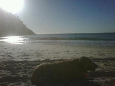 Capone+na+praia+2012 Adeus my LORD!! #alcapone4ever
