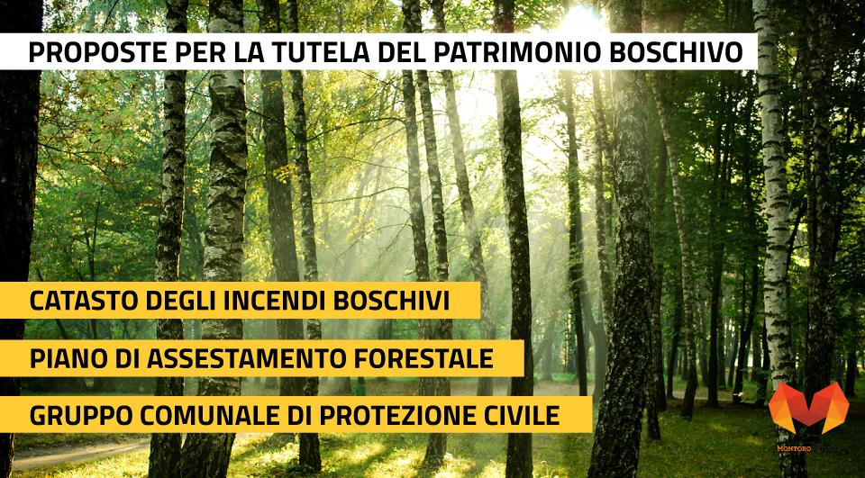 Proposte per valorizzare il patrimonio boschivo