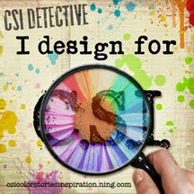 CSI Design Team